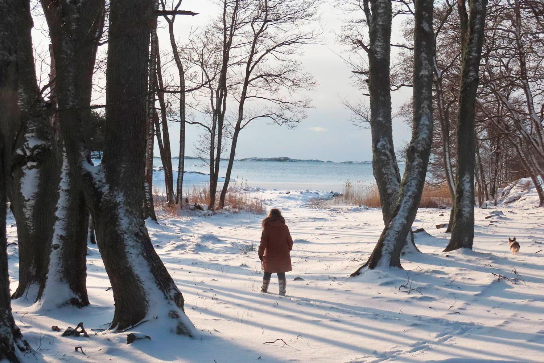 oro2_artikel_vinterskrud